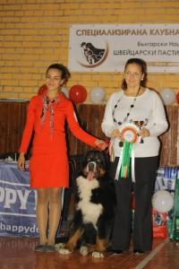 Хендлинг - Бернско пастирско куче